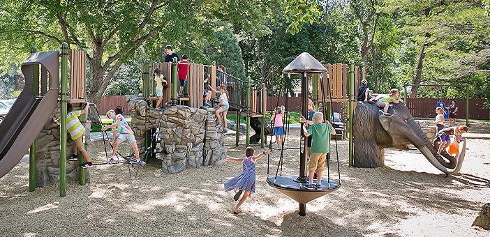 Sassafras playground image